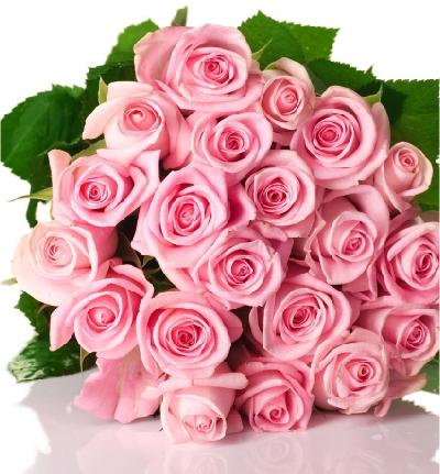 Envío De Flores A Domicilio Devoluciones Y Tiempos De